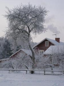 Halvarsviken i vinterskrud