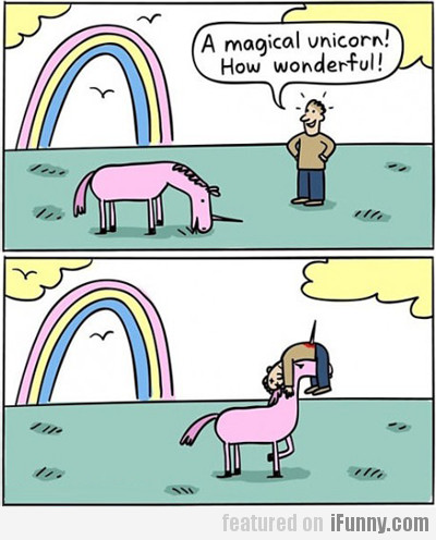 A Magical Unicorn! How Wonderful!