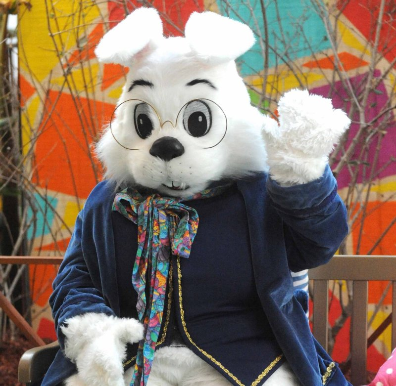 Large Of Easter Bunny Pictures