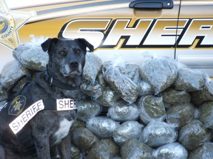 Sheriff Deputy Poses With Contraband