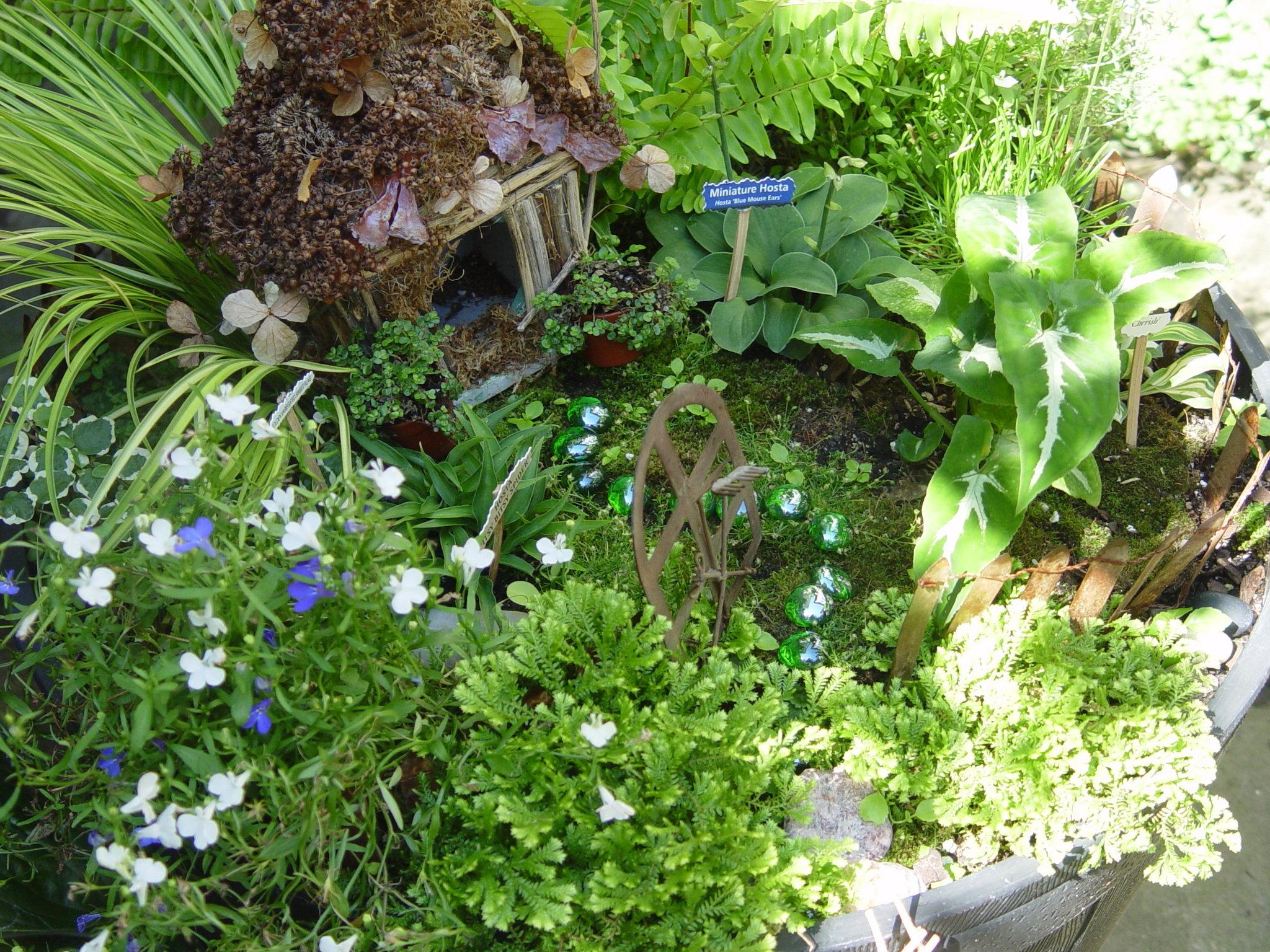 Fullsize Of Pics Of Fairy Gardens