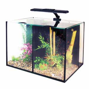 Image for Love Fish Betta Duo 20 Litre Aquarium from Pets At Home