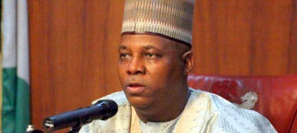 Governor Kashim Shettima Photo: VOA Hausa