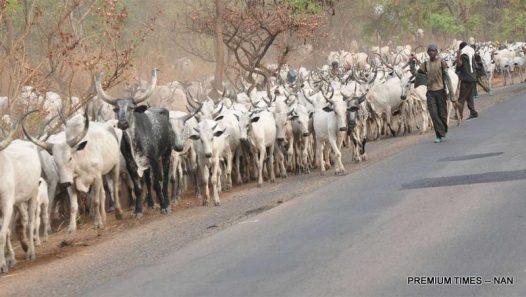 Fulani Herdsmen Credit: Today.ng