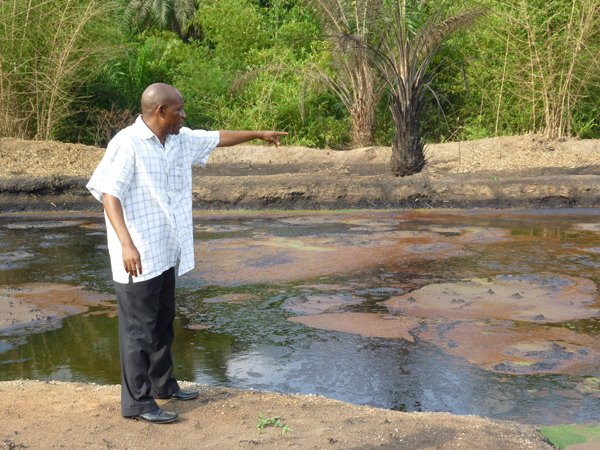 FILE PHOTO: Ogoni environment has been terribly polluted by oil exploration activities