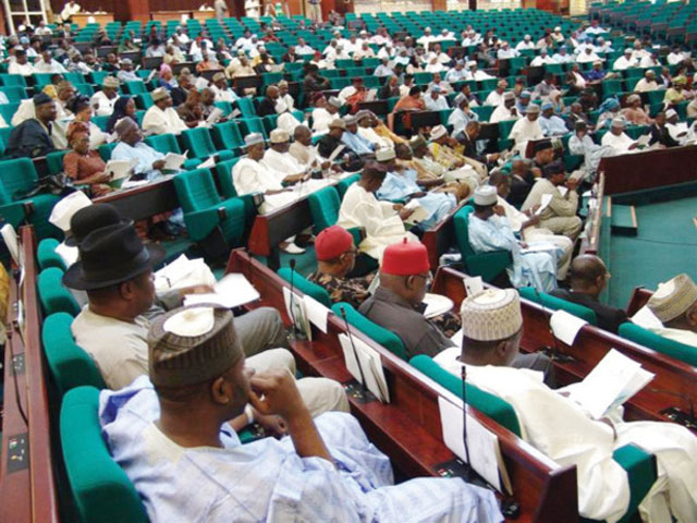 FILE PHOTO: House of Representative in session