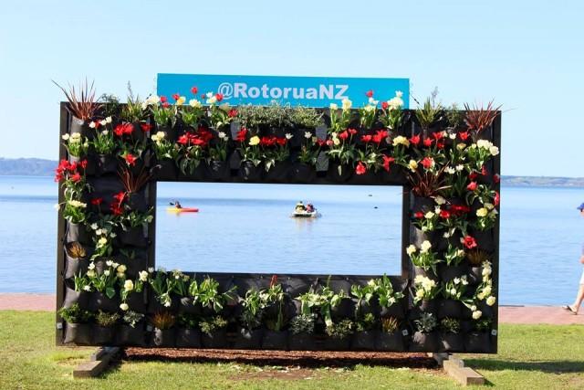 Rotorua. Photo credit: Sarah Campbell
