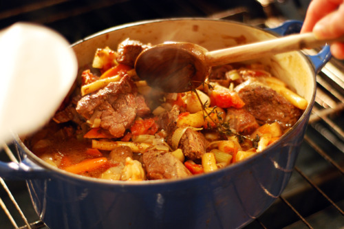 Paleo Slow Cooker Beef Stew with Parsnip