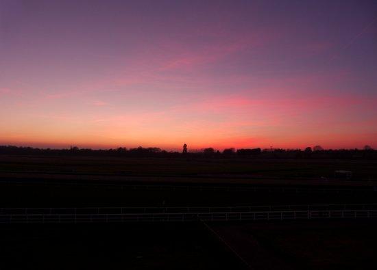 Surrey sunset