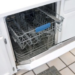 Small Of Mold In Dishwasher
