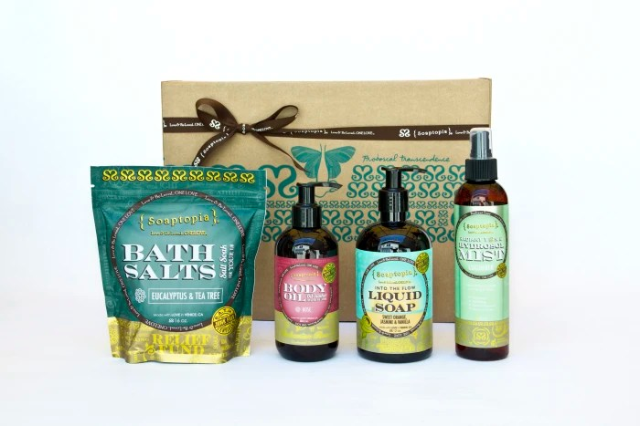 Soaptopia Box seen on Jill's Steals and Deals