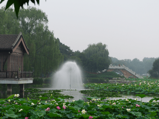 Old Summer Palace