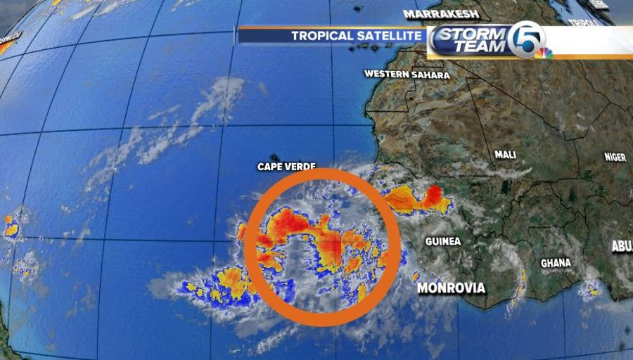 Intense Tropical Wave Near Africa   wptv com     of Africa near the Cabo Verde Islands had a medium chance of  development in 5 days as of the 8 a m August 3  update from the National  Hurricane Center