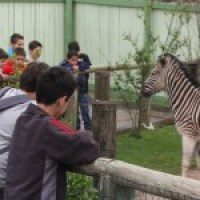 Uma visita ao zoologico de Pomerode