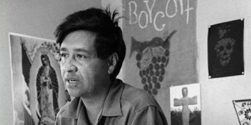 Cesar Chavez, farm worker labor organizer and leader of the California grape strike, circa 1965.  Photo by George Brich/AP.