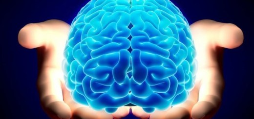 brain-735x440