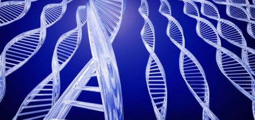 genes-determines