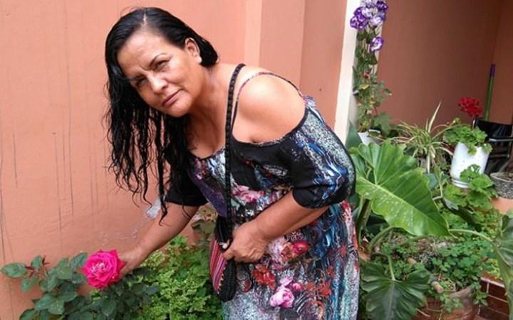 quipu1
