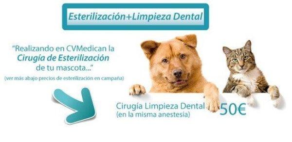 esterilizacioneslimpieza_dental