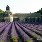 Provence - Abbaye de Sénanque