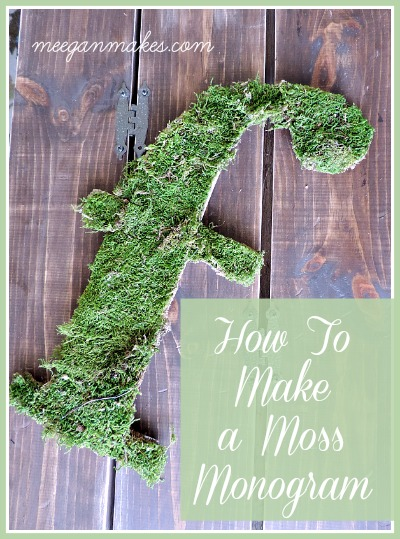 How To Make a Moss Monogram Button