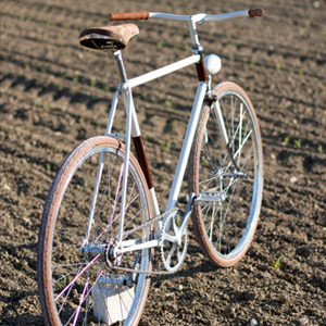 "Singlespeed ""Wa-lah!"" :: Biascagne Cycles (8)"