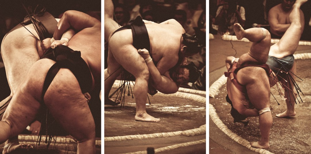 Art of Sumo :: Tomoki Momozono