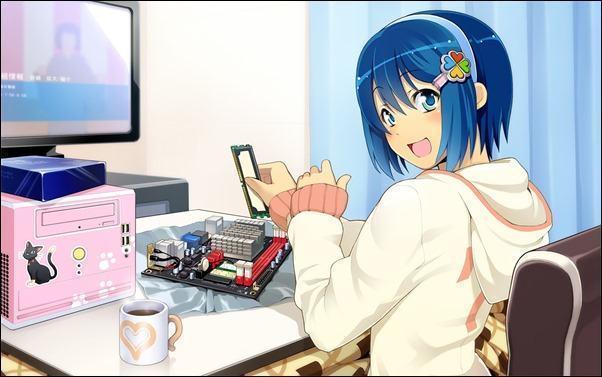 japinha_microsoft