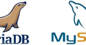 Google troca base de dados MySQL por MariaDB