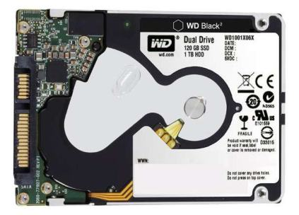 wd-dual-drive-back