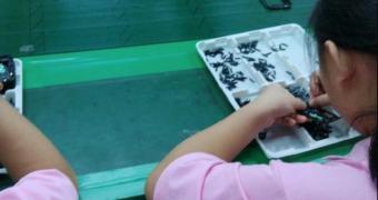 Samsung suspende negócios com fábrica chinesa após denúncias de trabalho infantil