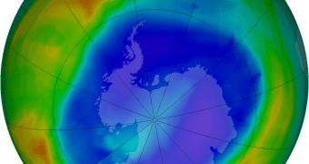 A camada de ozônio está realmente se recuperando