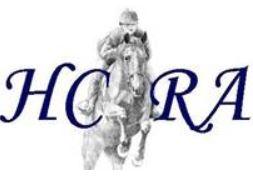 Texas logo 2