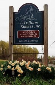 Trillium C