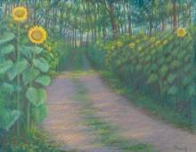 Sunflower Path