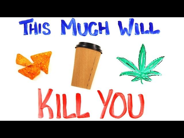 This Much Will Kill You Memolition