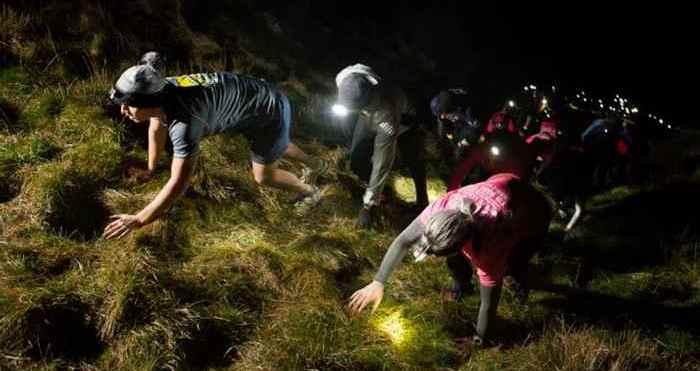 Top Trail Races 2016