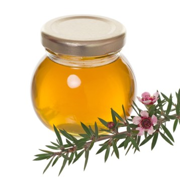 Manuka Honey: What's All The Fuss About?