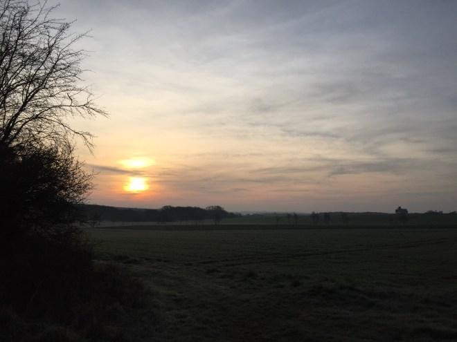 Petit matin frais du 8 avril 2015