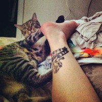 Cat-related injuries. It's an epidemic.
