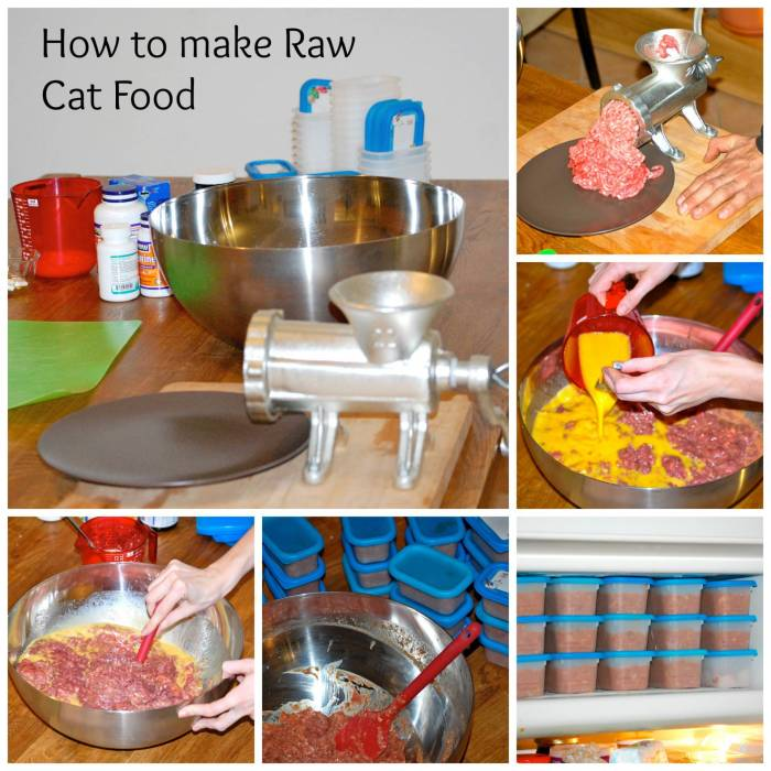 how to make raw cat food