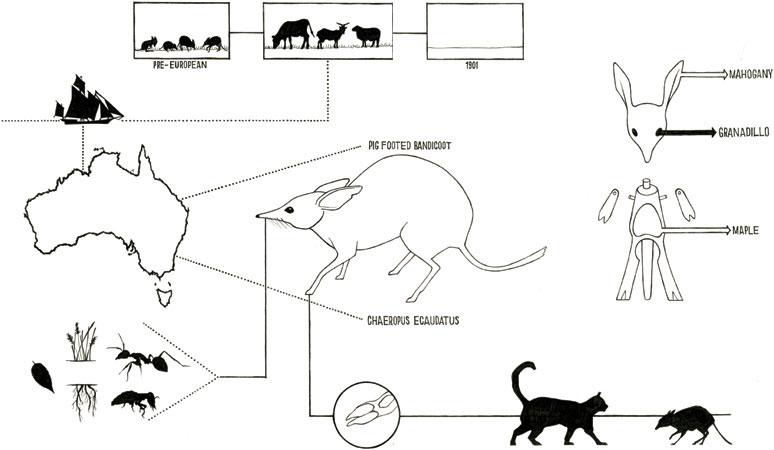 07-toys_extinct_animals