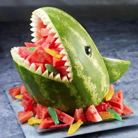 cocomero squalo