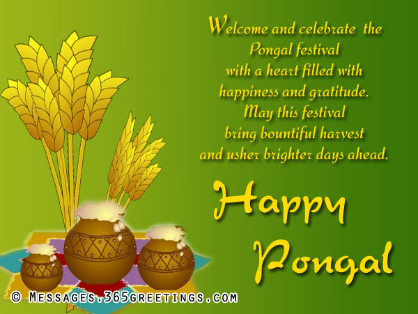 happy-pongal-greetings