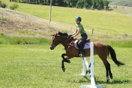 Equestrian-post