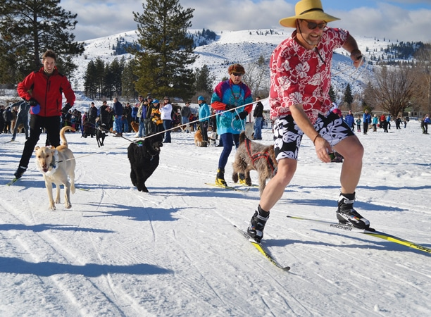 Steve Oulman and Thok led the pack in the 11th annual Doggie Dash. Photo by Laurelle Walsh