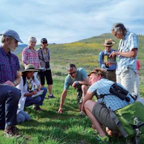 Kiesau (crouching) explains some botanical wonder to Dave Clement, left, Ferlito, Karen Fischer, Melinda Pruett, Weinstein, Charles Pruett and Betsy Weiss. Photo by Laurelle Walsh