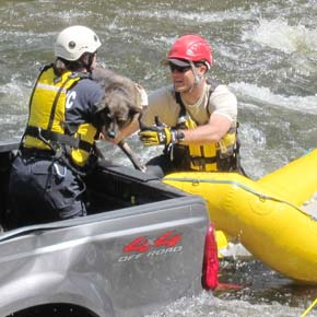 Dog rescued from truck that rolled into Chewuch River in Winthrop