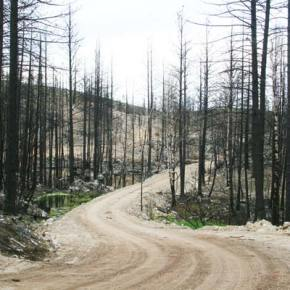Judge issues order closing Three Devils Road; appeal probable