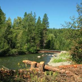 Twisp River fish habitat restoration project will be completed next year